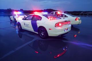 Dodge police cars with Department of Homeland Security logos.